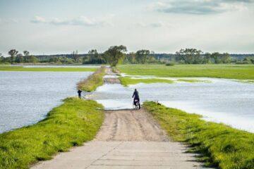 [Aktualizacja 17.10.2020] Stare Siołkowice - woda wystąpiła z koryta rzeki i miejscami rozlała się na międzywale