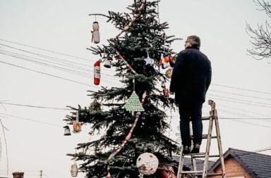 Festiwal Świąteczny - choinka poszukiwana!
