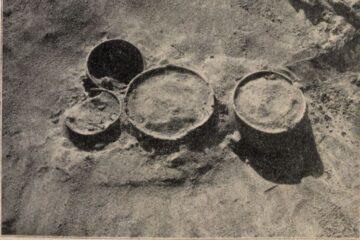 Ciekawostka historyczna. Wykopaliska spod Mikolina